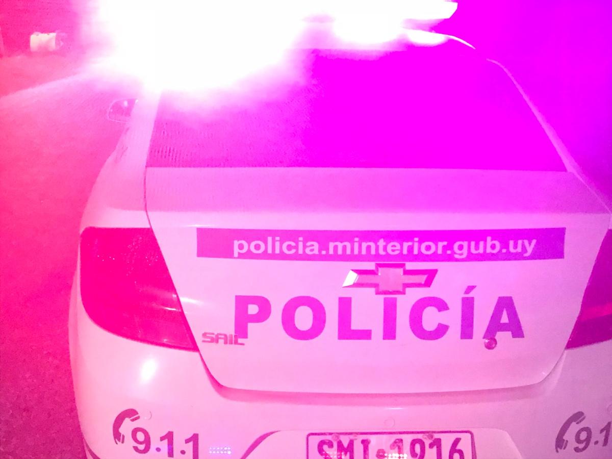 Robó en una tienda de La Paloma fue detenido y formalizado