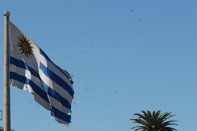 bandera uruguaya.jpg