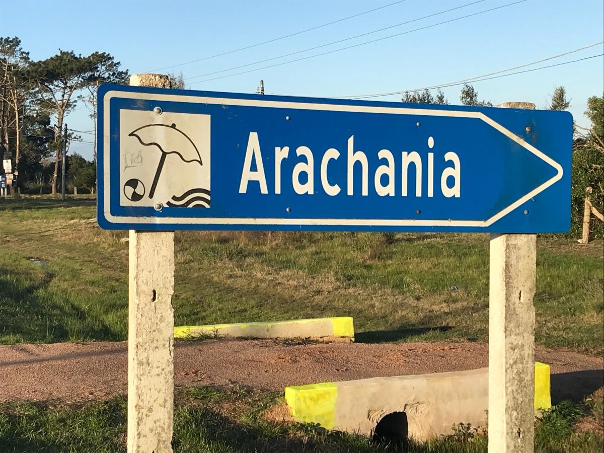 Arachania: Hallaron un cráneo que tiene indicios de haber sido utilizado por estudiantes de medicina